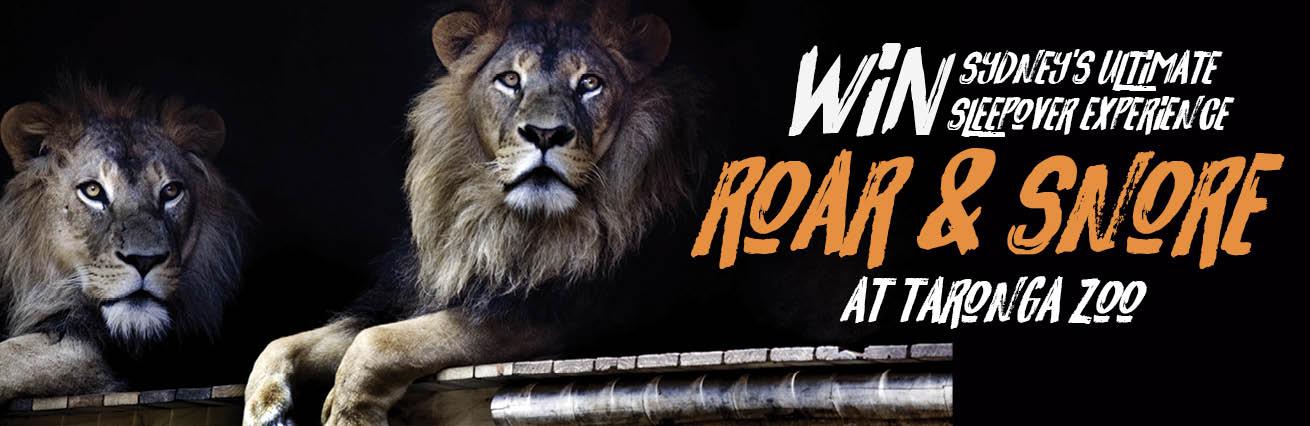 Win a Sleepover Experience at taronga zoo